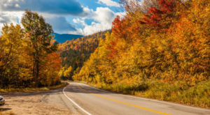 10 Country Roads In Massachusetts That Are Pure Bliss In The Fall