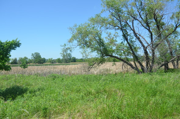 3. Lincoln Saline Wetland Nature Center (and the saline wetlands), Lincoln