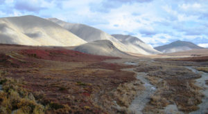 There's An Arctic Desert Hiding At This Underrated National Park In Alaska