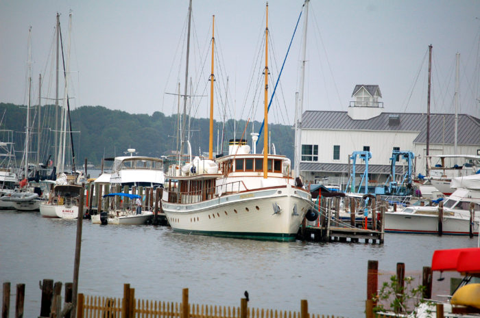 But if you prefer to stick to close to the water, Solomons Island will give you plenty to see as you stroll the Riverwalk boardwalk.