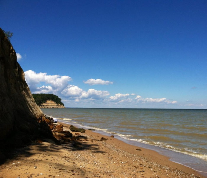 The adventurous may want to explore Calvert Cliffs, where you may even find a fossil or two.