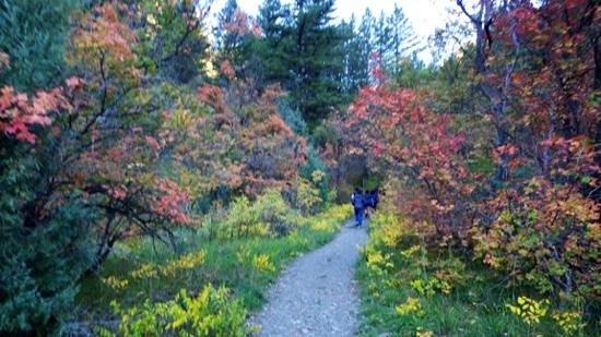 Hike the Crimson Trail.