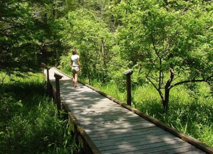 10 Of The Best Boardwalk Trails In Louisiana