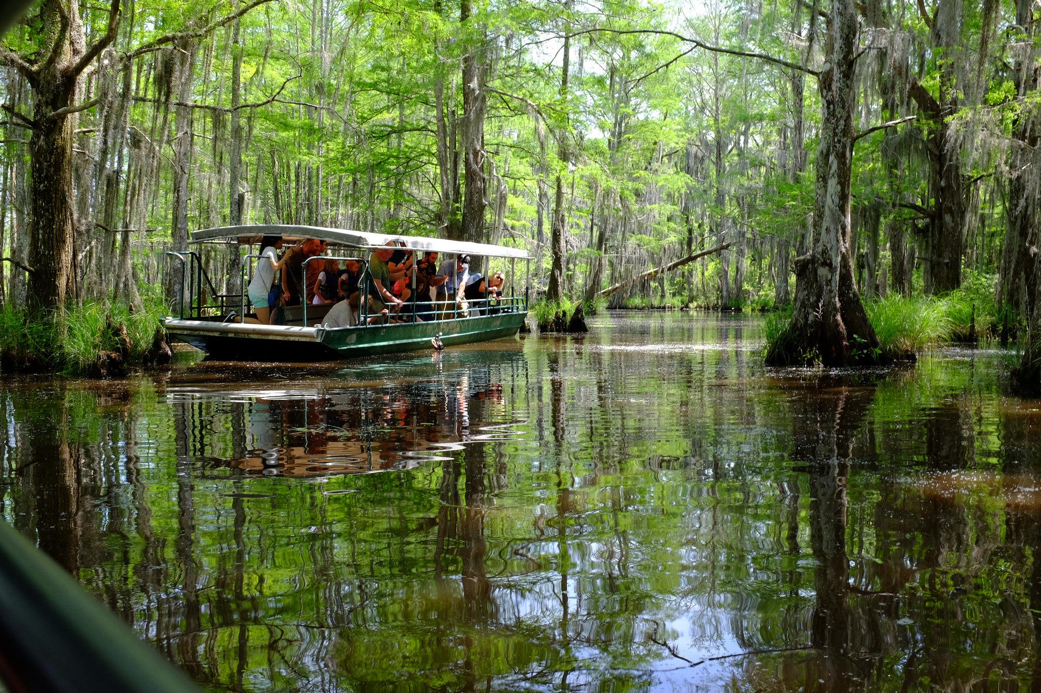 Great Swamp Rhode Island