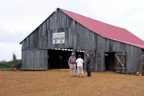 tennessee-museum-of-early