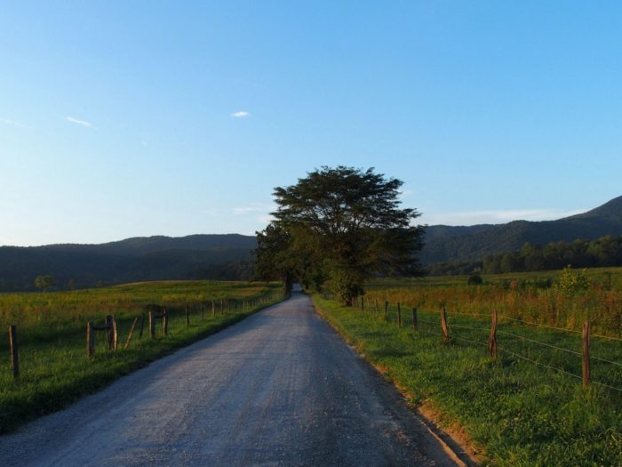 Another scenic area of the national park that will completely amaze you? Cades Cove.