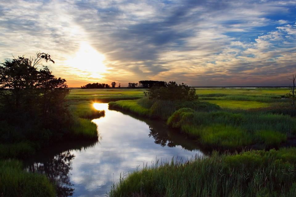 Bombay Hook National Wildlife Refuge Is The Most Isolated