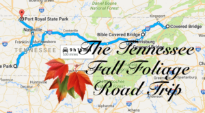 Take This Gorgeous Fall Foliage Road Trip To See Tennessee Like Never Before