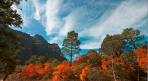 The 1-Mile Canyon Hike In Texas With Stunning Fall Foliage