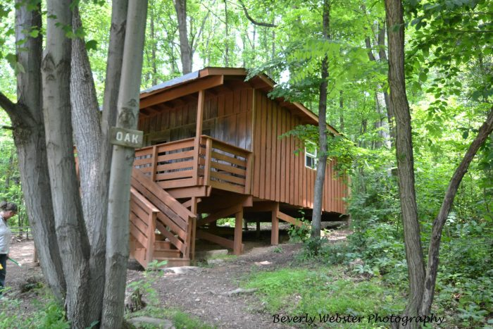 9. The Treehouse Camp at Maple Leaf Campground