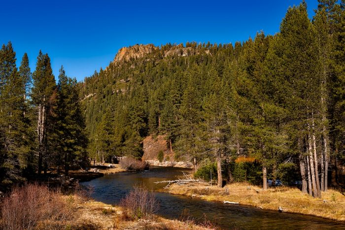 No matter what your experience level or dedication to the sport of fly fishing, there is hands down no better place to experience the sights and sounds of the Sierras than knee-deep in the Truckee River with a fishing pole in your hands.