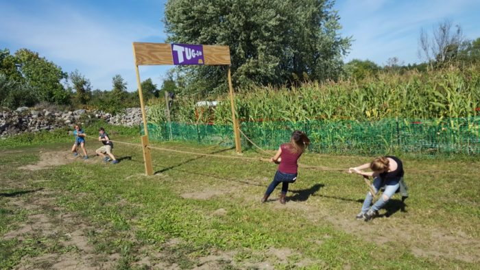 The maze is crafted for adults, so expect a challenge.