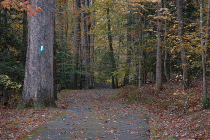 7. Westmoreland State Park