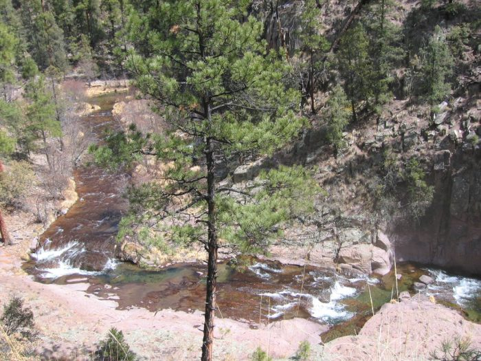 One of the most popular trails is the Gila West Fork Trail.