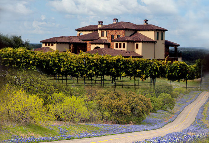 ...and tour some vineyards with Texas Wine Tours, ending the evening with a rustic dinner overlooking the endless rows of grapes while watching an unforgettable Texas sunset.