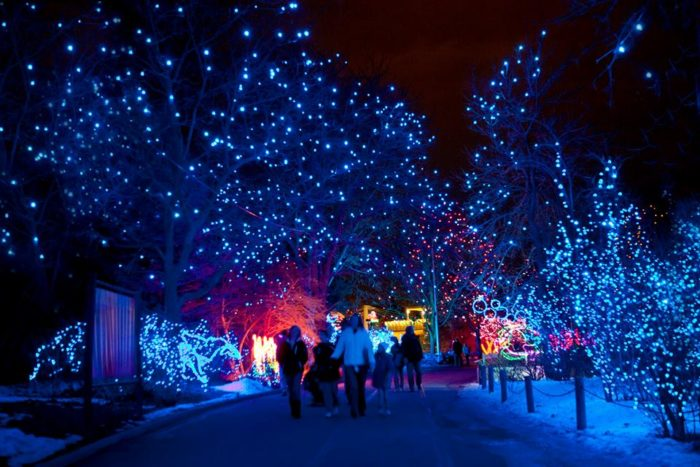 12 Best Christmas Light Displays In Colorado 2016