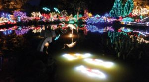 11 Christmas Light Displays In Oregon That Are Pure Magic