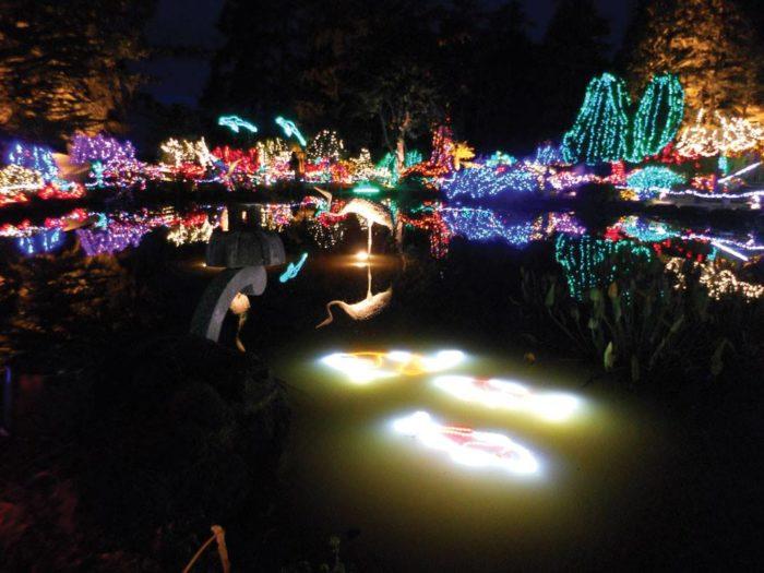 11 Best Christmas Light Displays In Oregon 2016