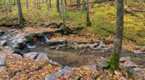 11 State Parks to Visit in Indiana Before Winter Sets In