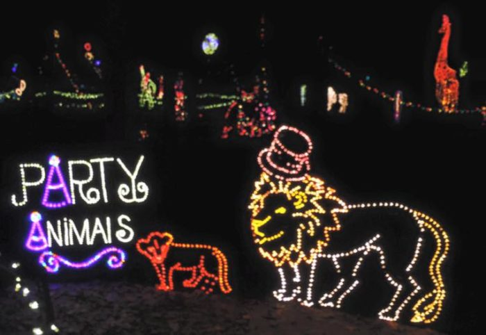 annmarie garden in lights dowell - Christmas Lights Maryland
