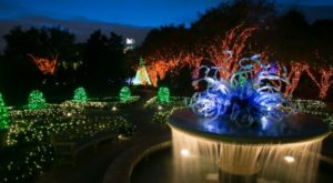 9 Christmas Light Displays In Georgia That Are Pure Magic