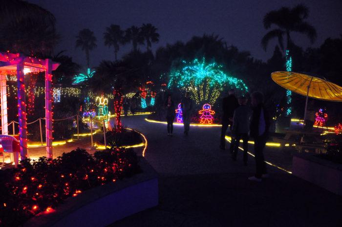 12 Best Christmas Light Displays In Florida 2016