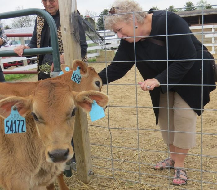 The Critter Barn Is Michigan S Most Exciting Hobby Farm