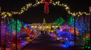 11 Christmas Light Displays Around Denver That Are Pure Magic
