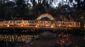 If You Live In Florida, You'll Want To Visit This Amazing Park This Winter