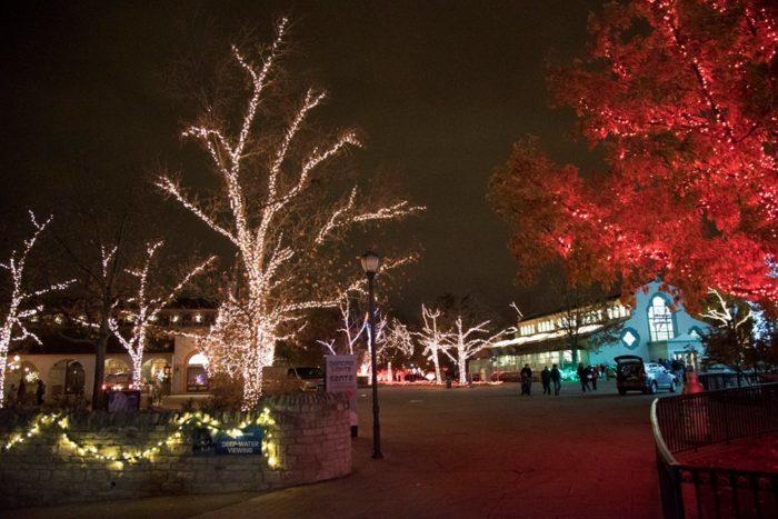 Lights Before Christmas Toledo Zoo