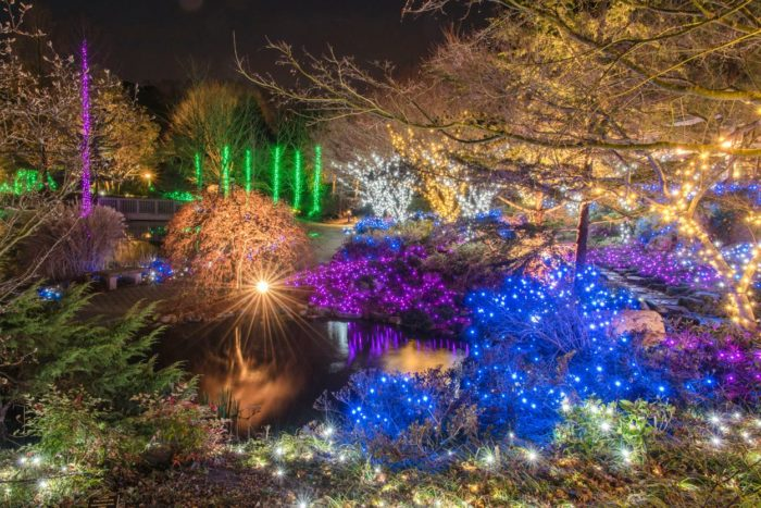 Botanical Gardens Christmas Lights