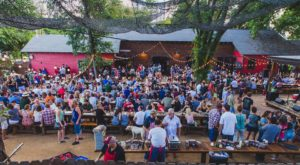 Try These 10 Austin Restaurants For A Magical Outdoor Dining Experience