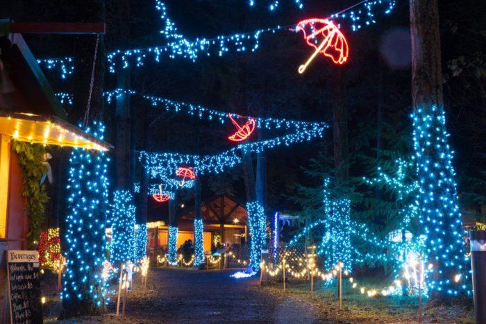 Christmas Lights Milwaukee