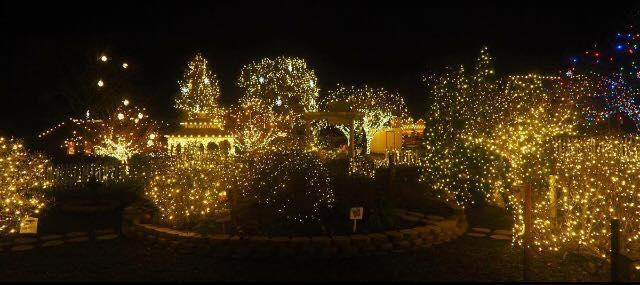 Lehigh Valley Zoo Winter Light Spectacular U2013 5150 Game Preserve Road,  Schnecksville, PA 18078