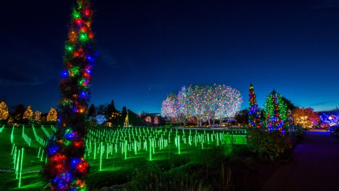 10 Best Christmas Attractions In Denver