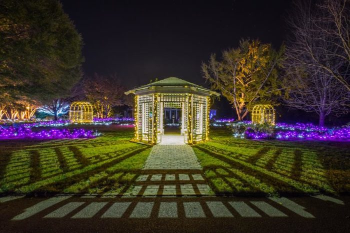 The magical christmas lights road trip through virginia for Lewis ginter botanical gardens christmas