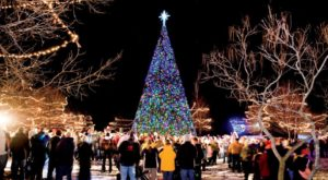 12 Christmas Light Displays In Michigan That Are Pure Magic