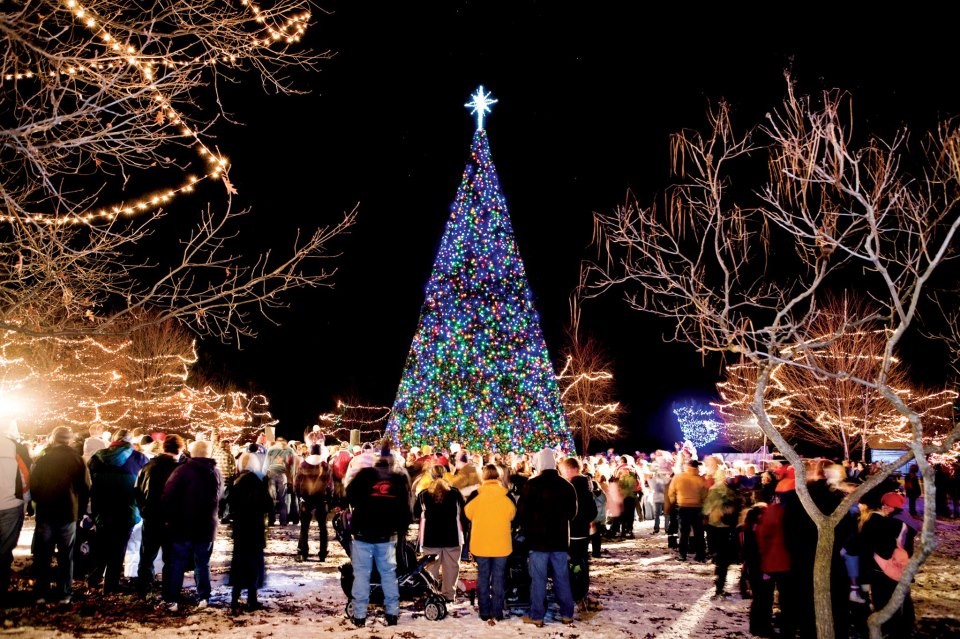 12 best christmas light displays in michigan 2016 - Christmas Light Show Michigan