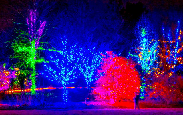 the christmas lights road trip through massachusetts thats nothing short of magical - Neon Christmas Lights