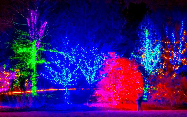 13 Best Christmas Light Displays In Massachusetts 2016