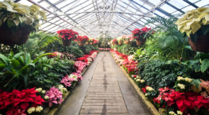 8 Natural Hidden Gems In Cleveland Most People Don't Know Even Exist