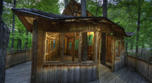 The Easy Ohio Hike To An Epic Tree House That Will Make You Feel Like A Kid Again