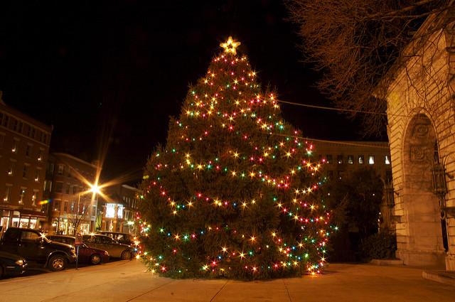 Light Your Christmas Tree
