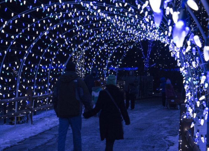 Take This Road Trip To 10 Christmas Light Displays In Pennsylvania ...