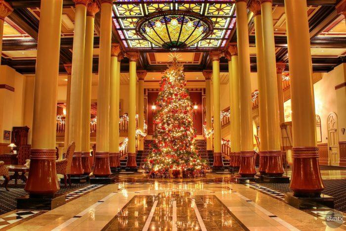 Austin Texas Christmas Lights
