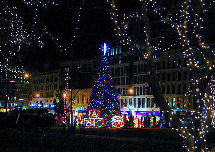 Berkshire Christmas Trees