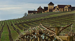 The 9 Most Beautiful Vineyards Around Portland
