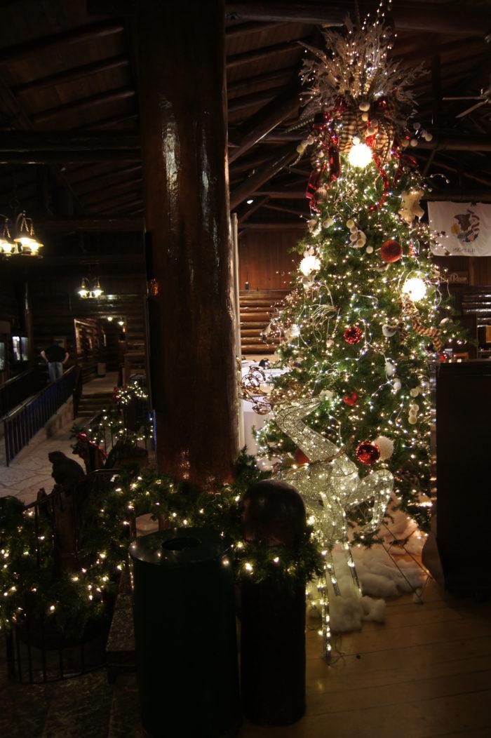Hang Lights On A Christmas Tree