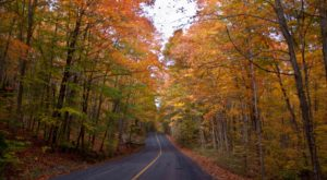 Take These 11 Country Roads In Illinois For A Gorgeous Scenic Drive