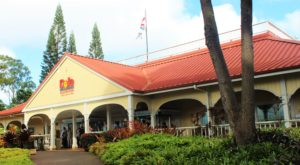 The Quintessential Hawaiian Attraction Everyone Needs To Experience Once